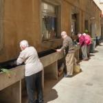 Hort Urbà Centre de Dia Barcelona 3